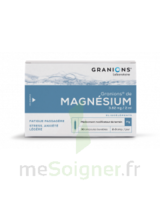 Granions De Magnesium 3,82 Mg/2 Ml S Buv 30amp/2ml à Paris