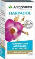 Arkogelules Harpagophyton Gélules Fl/150 à Paris