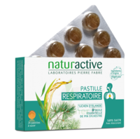 Naturactive Pastilles Respiratoires Aux Essences B/24 à Paris