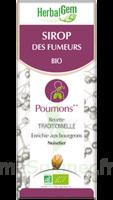 Herbalgem Sirop Bio Des Fumeurs 150ml à Paris