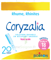 Boiron Coryzalia Solution Buvable Unidose B/20 à Paris
