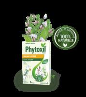 Phytoxil Toux Sans Sucre Sirop Adulte Enfant +6 Ans 12 Sachets/10ml à Paris